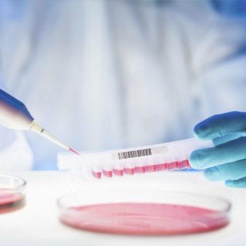 药物基因组学领域